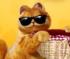 Raccogliere il Cibo di Garfield