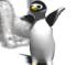 il Lancio del Pinguino